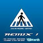 Christian Paduraru Beatport (Remixes)