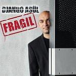 Django Asül Fragil (Live)