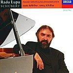 Radu Lupu Schubert: Piano Sonatas Nos.13 & 21