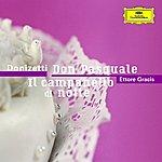 Orchestra Del Maggio Musicale Fiorentino Donizetti: Don Pasquale / Il Campanello Di Notte