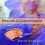 David Darling Prayer For Compassion