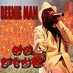 Beenie Man On Fire