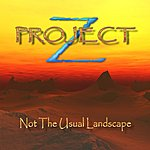 Project Z Not The Usual Landscape