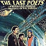 The Last Poets Delights Of The Garden