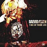 Daevid Allen Time Of Your Life, Vol. 1