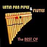Santiago Latin Pan Pipes & Flutes