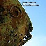 Paul Harrison Bioluminescence