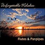 Santiago Unforgettable Melodies, Flutes & Panpipes
