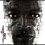 Seal Amazing - The Remixes