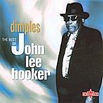 John Lee Hooker Dimples