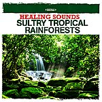 Nature Sounds Healing Sounds - Sultry Tropical Rainforests