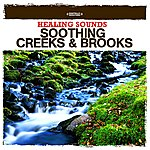 Nature Sounds Healing Sounds - Soothing Creeks & Brooks