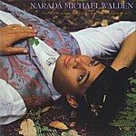 Narada Michael Walden The Nature Of Things