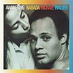 Narada Michael Walden Awakening
