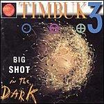 Timbuk 3 Big Shot In The Dark
