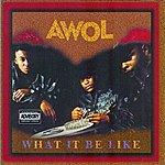 Awol What It B Like