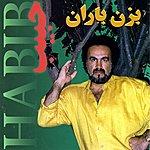 Habib Bezan Baran