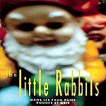 Little Rabbits Dans Les Faux Puits Rouges Et Gris