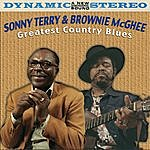 Sonny Terry Greatest Country Blues