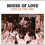 The House Of Love Live At The BBC