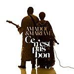 Amadou & Mariam Ce N'est Pas Bon