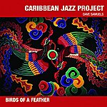Caribbean Jazz Project Birds Of A Feather