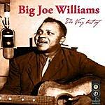 Big Joe Williams The Very Best Of