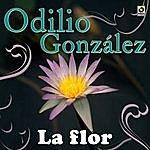 Odilio Gonzalez La Flor