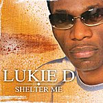 Lukie D Shelter Me