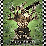 Fishbone Live At The Temple Bar And More