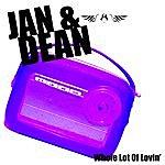 Jan & Dean Whole Lot Of Lovin'