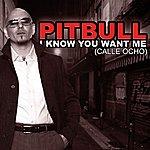 Pitbull I Know You Want Me (4-Track Maxi-Single)