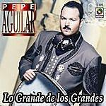 Pepe Aguilar Lo Grande De Los Grandes