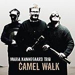 The Maria Kannegaard Trio Camel Walk