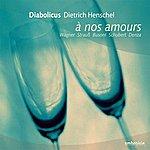 Dietrich Henschel A Nos Amours