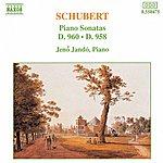 Jenő Jandó SCHUBERT: Piano Sonatas Nos. 21, D. 960 And 19, D. 958