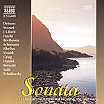 Barry Wordsworth Sonata - Classics For Relaxing And Dreaming