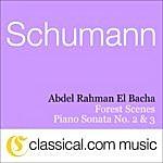 Abdel Rahman El Bacha Robert Schumann, Piano Sonata No. 2 In G Minor, Op. 22