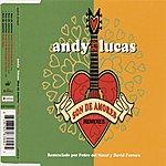 Andy & Lucas Son De Amores (4-Track Maxi-Single)
