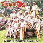 Banda Pequeños Musical Con Paso Sensual