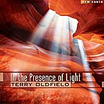 Terry Oldfield In The Presence Of Light