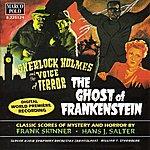 William Stromberg Salter / Skinner: Sherlock Homes and the Voice of Terror