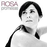 Rosa Promesas