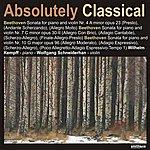 Wolfgang Schneiderhan Absolutely Classical, Vol.176