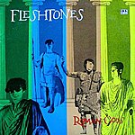 Fleshtones The World Has Changed (Single)