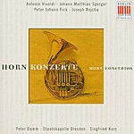 Peter Damm Antonio Vivaldi/Johann Matthias Sperger/Peter Johann Fick/Joseph Rejcha: Horn Konzerte/Horn Concertos