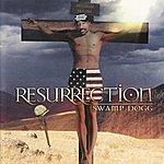 Swamp Dogg Resurrection