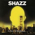 Shazz A View Of Manhattan