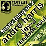 Ronan Funky Thing, PT 2