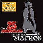 Banda Machos 25 Bandazos De Machos (Usa)